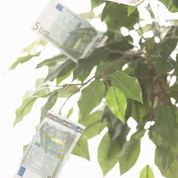 Schnell und einfach 1000 Euro problemlos aufs Konto